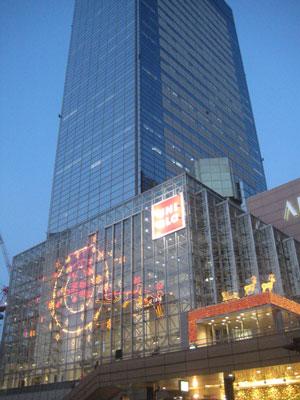 20081107-1.jpg